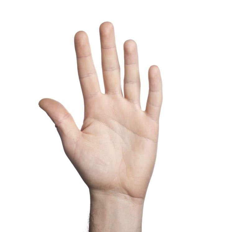 יד hand